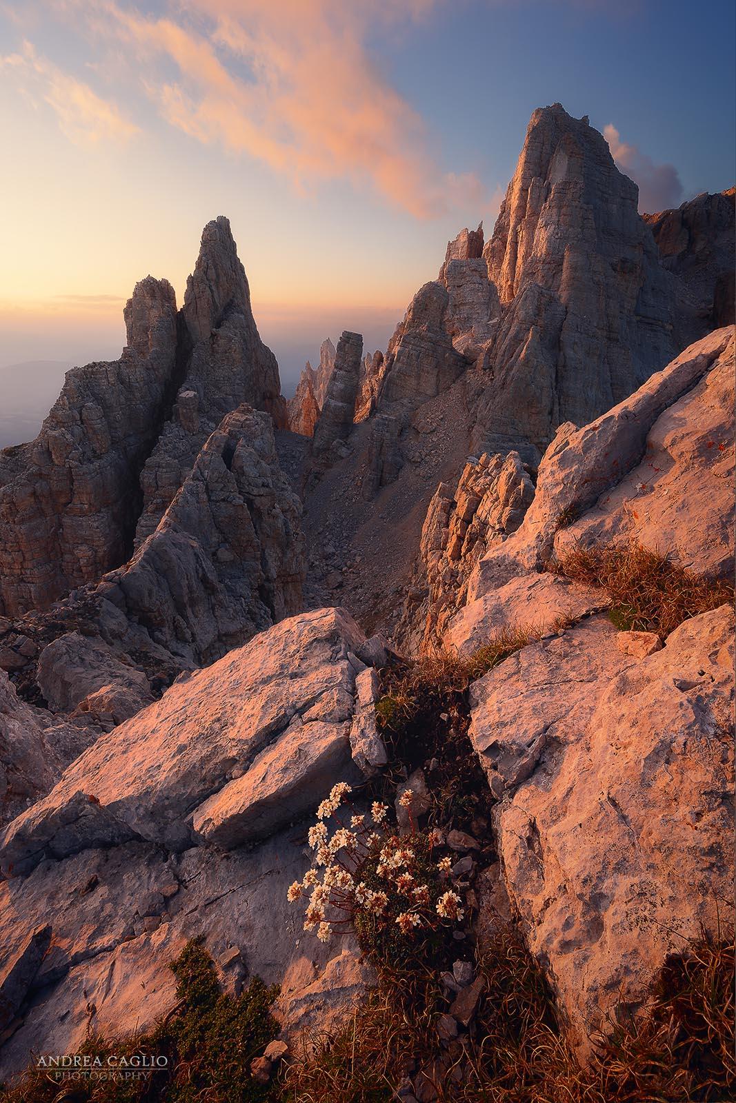 torre-di-pisa-tramonto